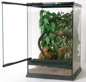 zoo med crested gecko tank