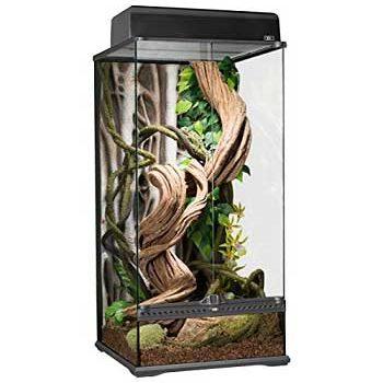 exo terra rainforest terrarium