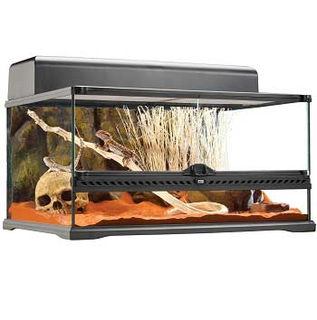 20-gallon reptile tank
