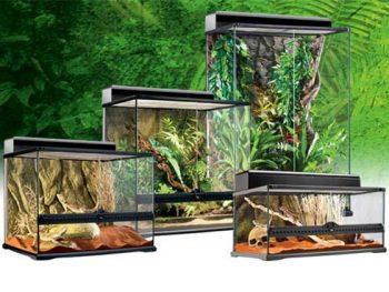 Enclosures & Terrariums