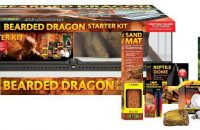 Exo Terra Bearded Dragon Starter Kit: For Juvenile Only
