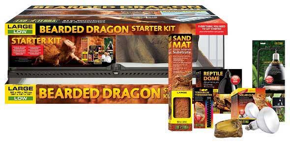 young Bearded Dragon Starter Kit from Exo Terra
