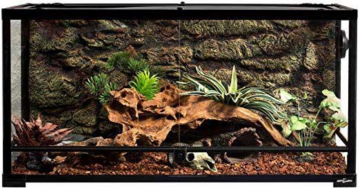 40-gallon Reptile Tank